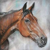 Pferdezeichnung, Pferdeportrait, Pferdeportraits, Tierzeichnung, Tierportraits