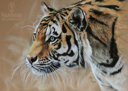 Kunstdruck Bild Amur Tiger, Pastellblicke Tierportraits - Jutta Pallasch, Wildlife Zeichnung, Tigerzeichnung