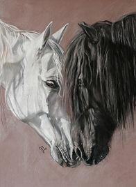 Zeichnung Pferde in Pastellkreide -  Postkarte/Künstlerkarte, Jutta Pallasch - Pastellblicke Tierportraits