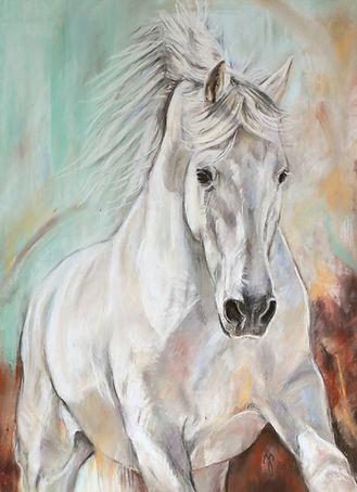 Pferdezeichnung Pastellblicke Jutta Pallasch Pferdeportraits