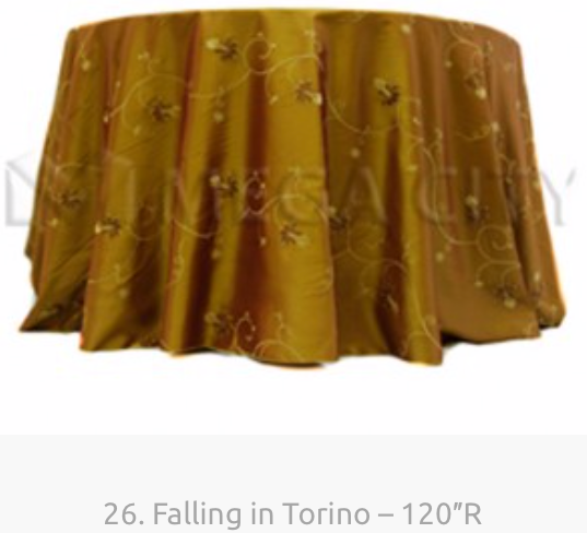 26. Falling in Torino – 120″R.png