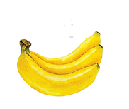 SINGLE%20FRUITS%202_edited.png