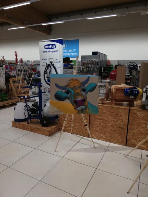 Ausstellung im FAIE Markt in Regau