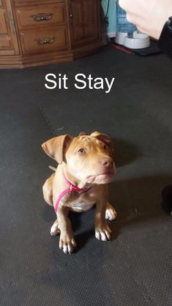 Lana Sit
