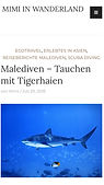 Tiger Sharks Tigerhaien