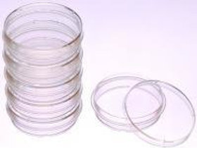Cell culture dishes, VWR®