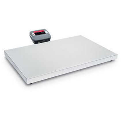 Bench Scale, C51XE50X