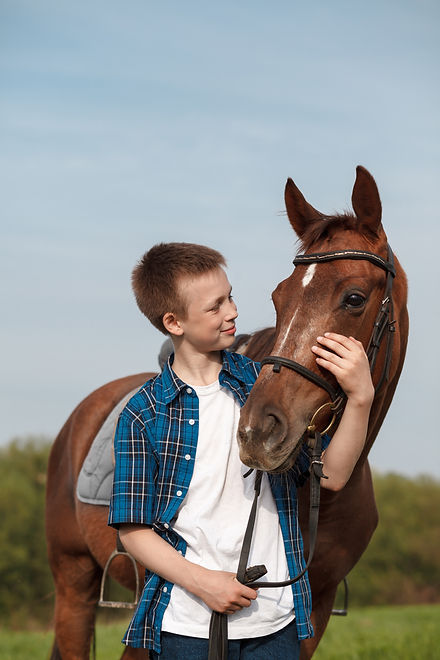 Portrait of a brown horse and boy.jpg