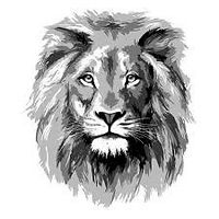 Black and White Lion.jpg