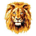 lion01.jpg