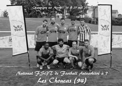 Les Choucas