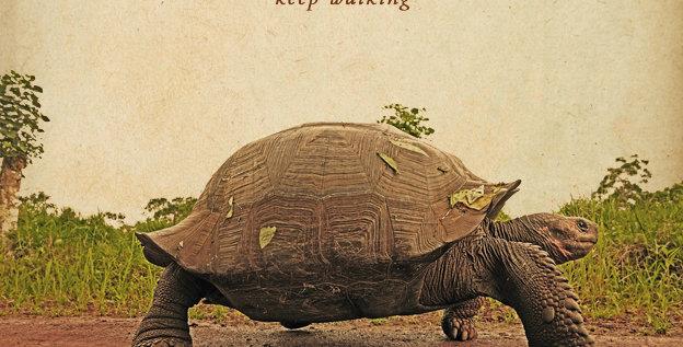 """""""Keep walking"""" (CD)"""