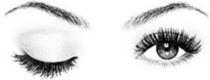 doll eye lash extensions.png