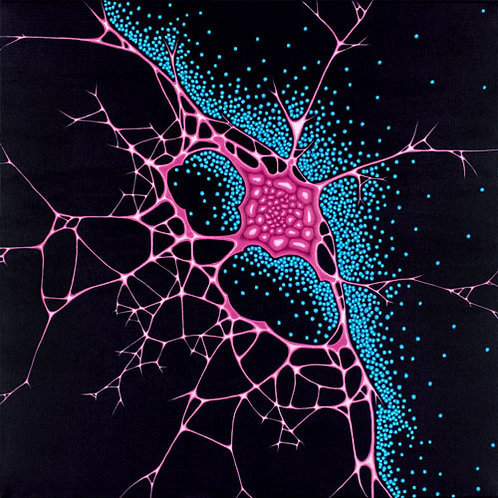 Sensate, abstract neuroscience painting by Heidi Hodkinson. Pink butterfly neural net & blue neurons