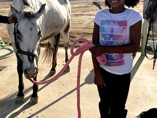 Beginner Horse Camp