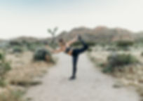 CactusMoon-61.jpg