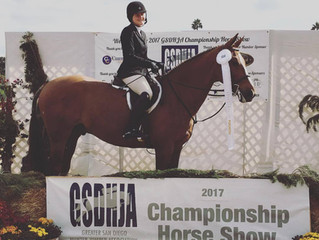 2017 GSDHJA Championship Show Results