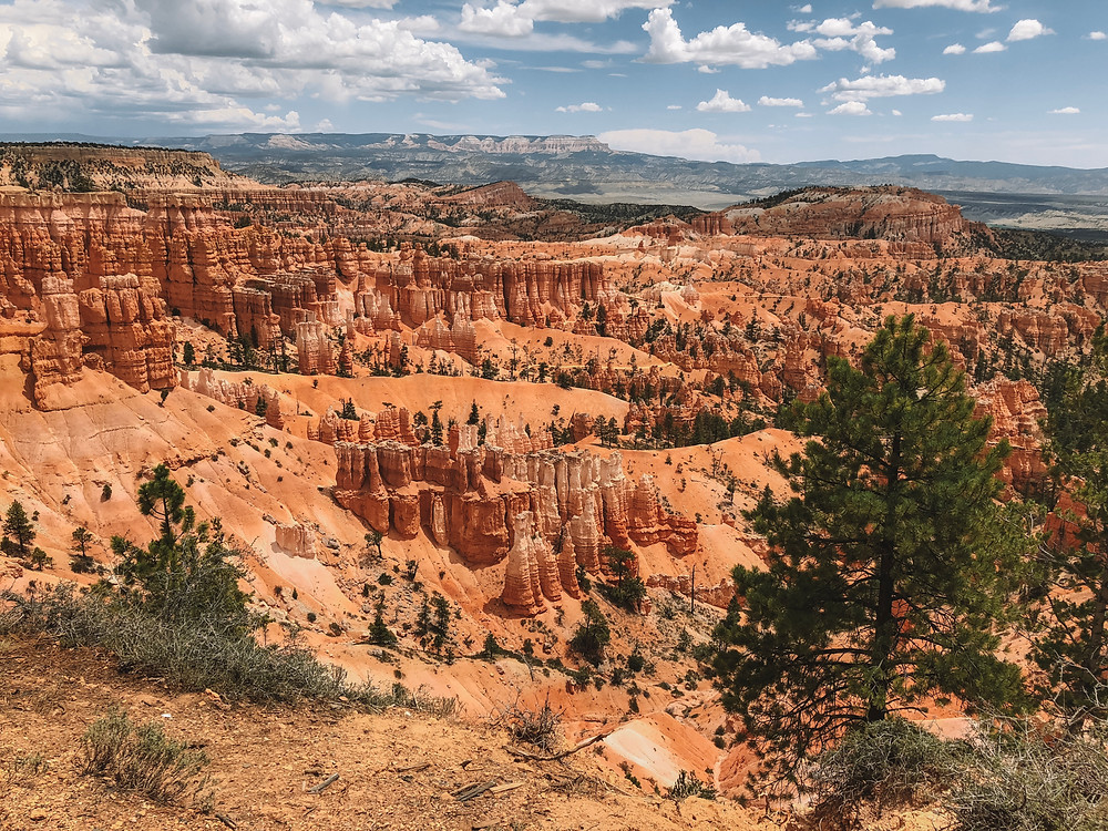 sunset point sunrise point bryce canyon national park hoodoos amphitheatre