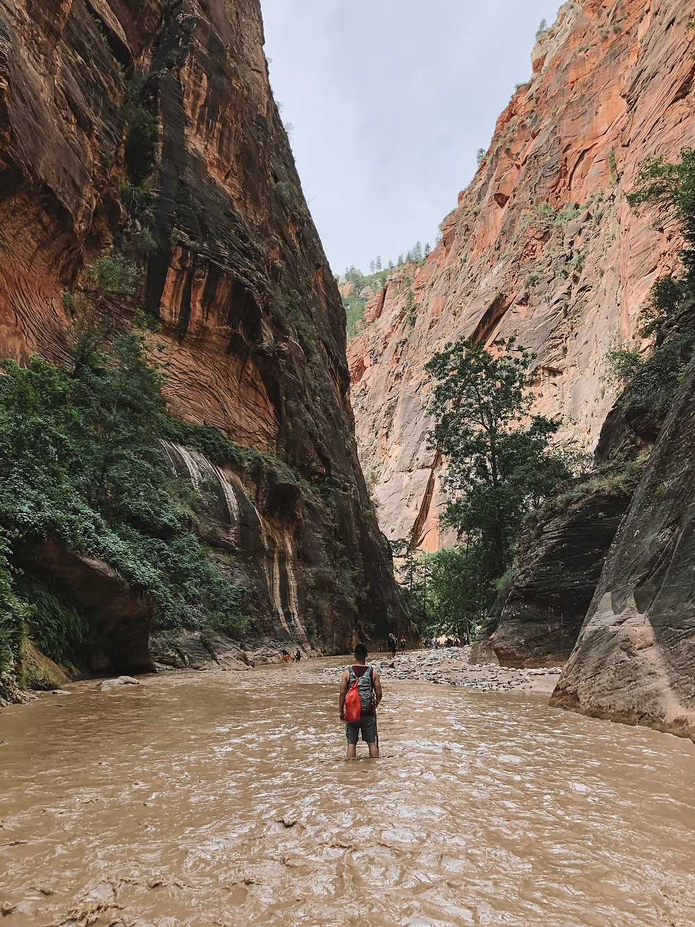 the narrows zion national park hike trail stream cliffs walls