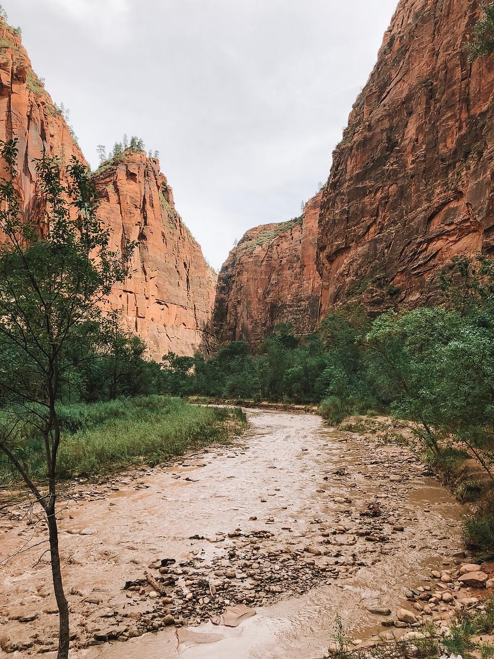 zion national park stream red rocks peak cliff