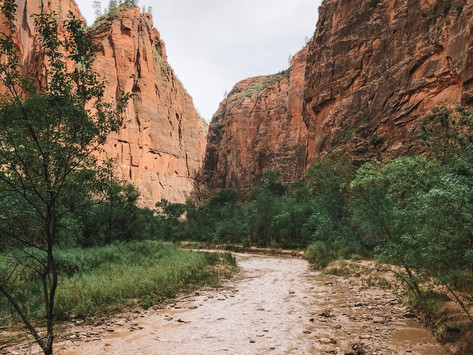 A Guide to Zion and Bryce Canyon National Parks