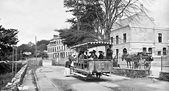 Trams Warrenpoint