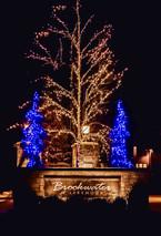 Lakemoor HOA 2019 - Brookwater South Ent