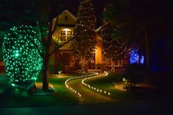 LED Christmas Lights - Warm White - Lighted Path - Tree Wrap - Bush Wrap