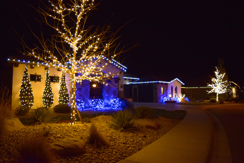 LED Christmas Lights - Blue, Warm White, Pure White