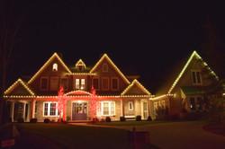 LED Christmas Lights - Warm White - Red Tree Wrap