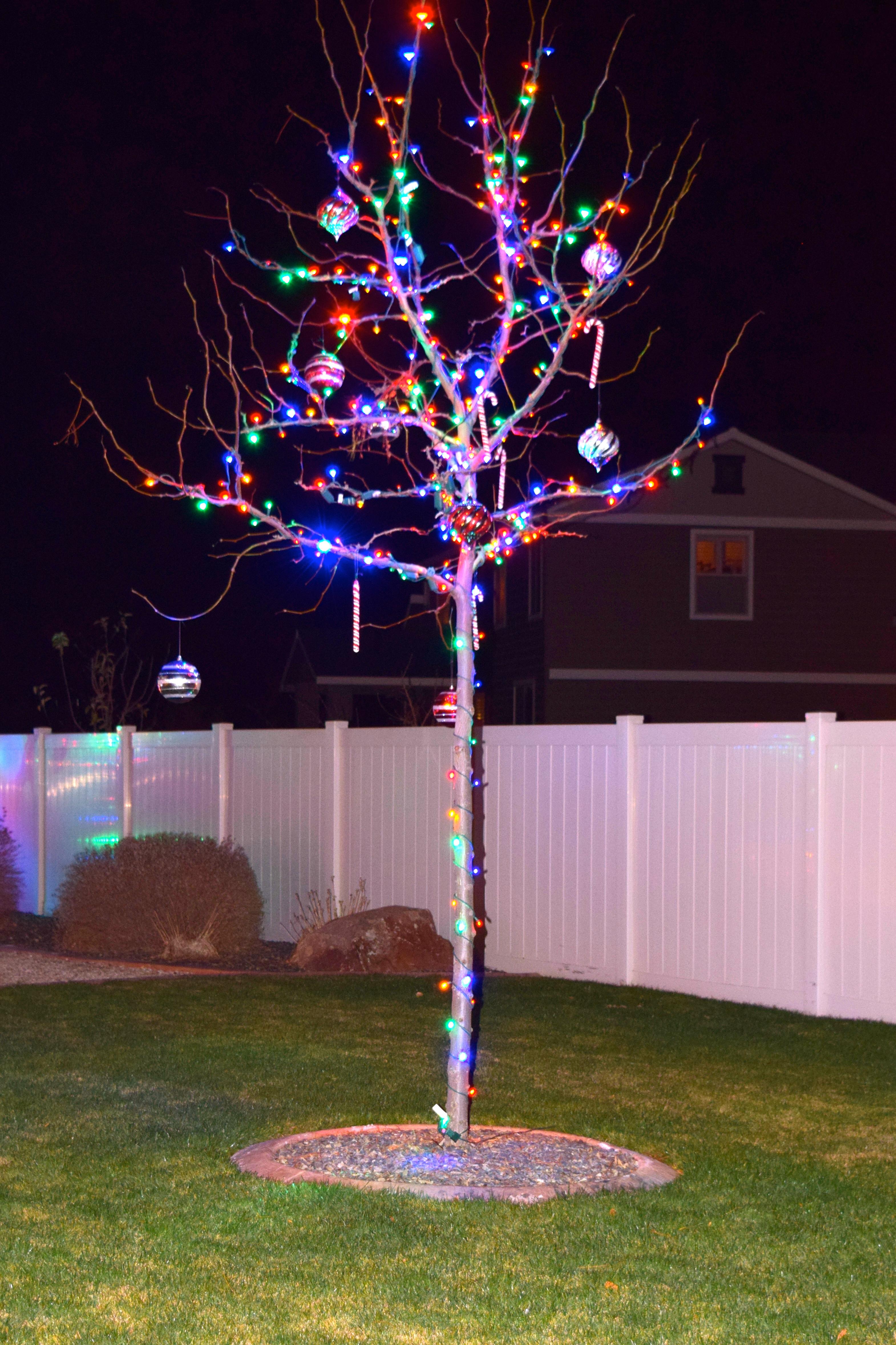 LED Christmas Lights - Multicolor