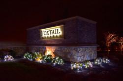Foxtail HOA - LED Pure White Christmas Lights