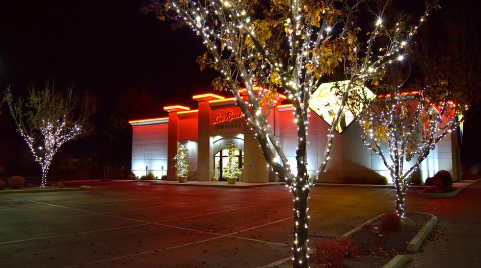 Lee Read Jewelers - LED Christmas Lights