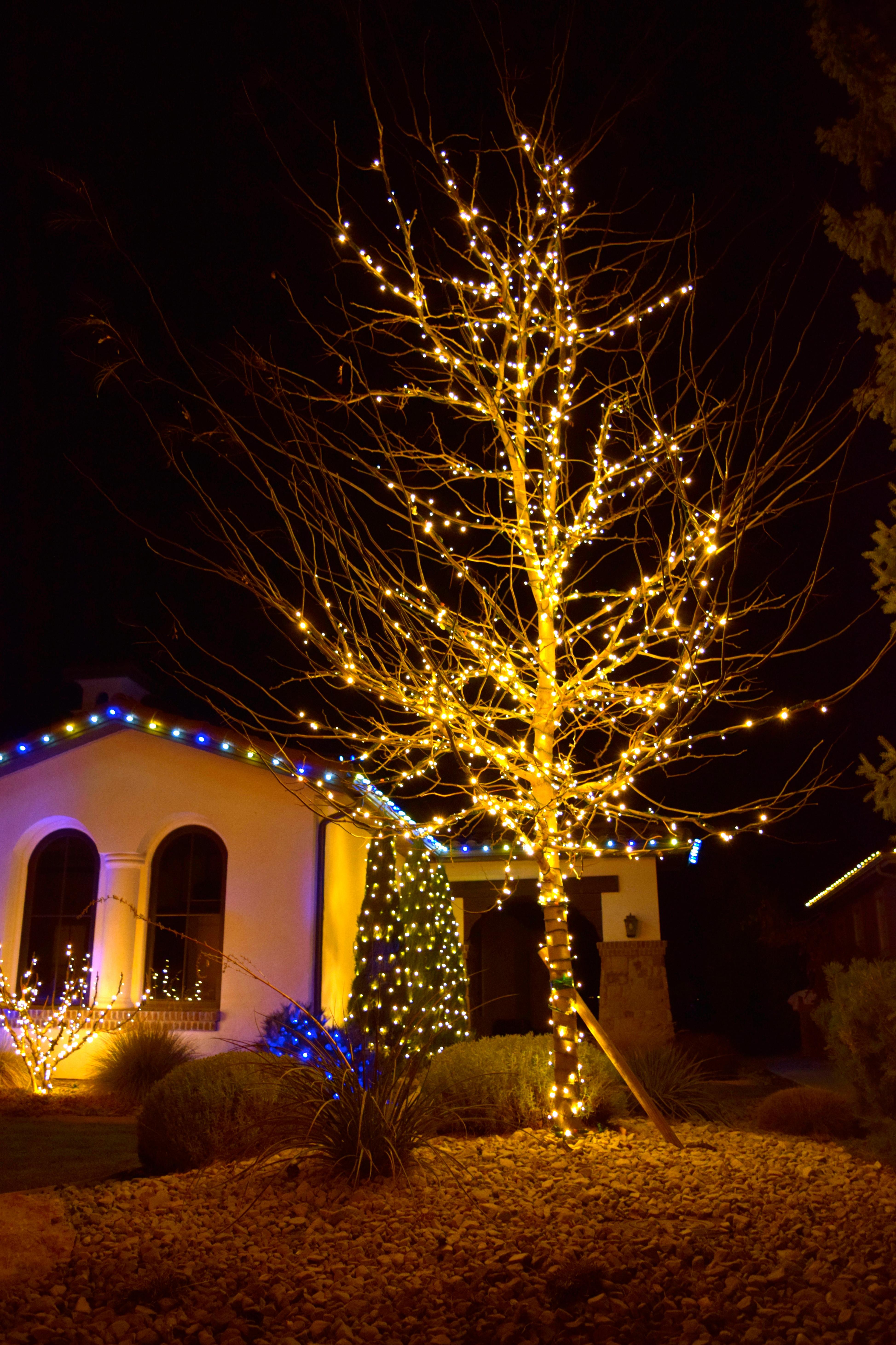 LED Christmas Lights - Warm White Full Wrap Tree