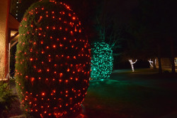 LED Christmas Lights - Bush Wrap