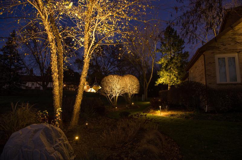 Boise landscape lights
