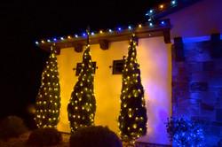 LED Christmas Lights - Bush Wrap - Warm White_Blue_Pure White