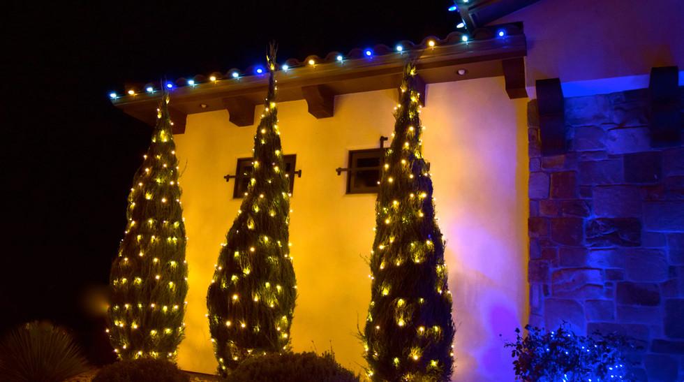 LED Christmas Lights - Bush Wrap - Warm