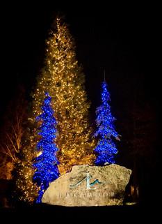Lakemoor HOA 2015 - Warm White Pine Tree