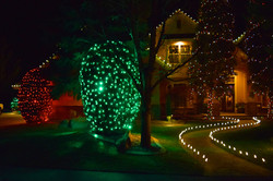 LED Christmas Lights - Warm White - Bush Wrap - Lighted Path