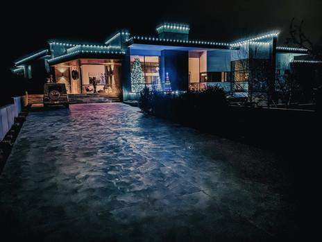 McMillan, Mara 2019 - Pure White - Showm