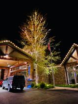 Holiday Inn McCall 2019 - Warm White - W