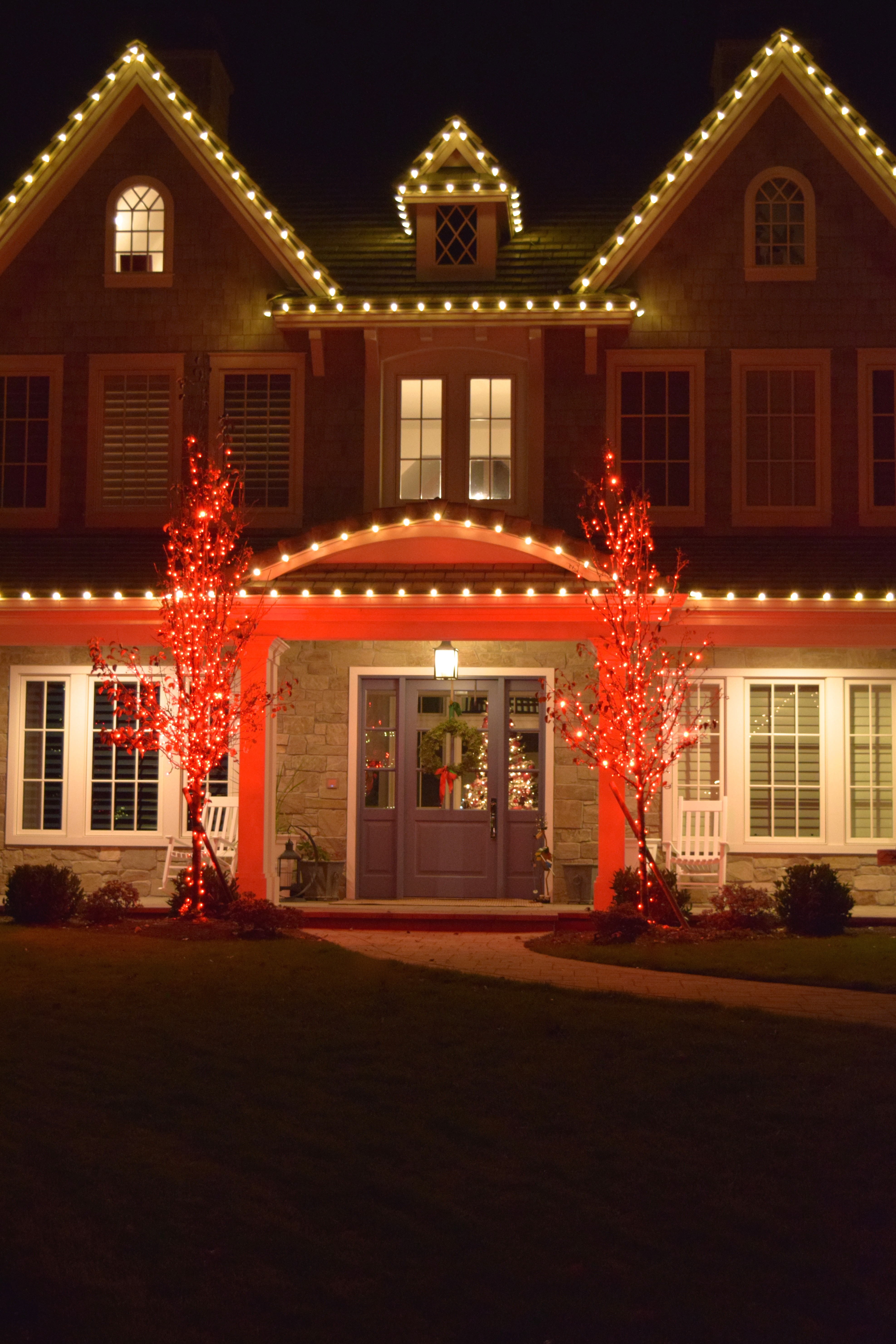 LED Christmas Lights - Warm White, Red