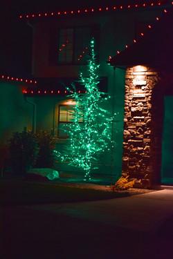 LED Christmas Lights - Tree Wrap - Green