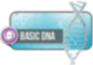 basic theta.png