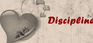 LA DISCIPLINE