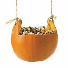 A pumpkin bird feeder with seeds