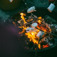Toasting marshmallows in the garden