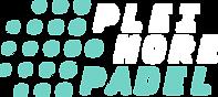 Pleimore_Logo_03_grey_bgd.png
