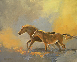 Run Pony Run